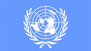 """الأمم المتحدة:غارات""""تحالف السعودية""""توقع شهريا 100 قتيل مدني   صعدة نيوز"""